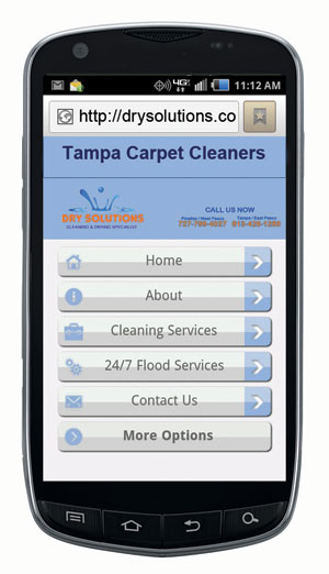 Example of mobile website for cleaning biz